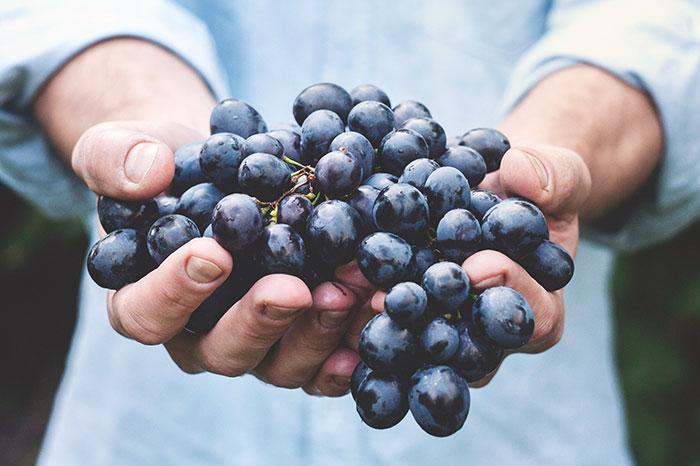Fruktoseintoleranz kann von zu viel Fruchtzucker in verarbeiteten Lebensmitteln kommen.