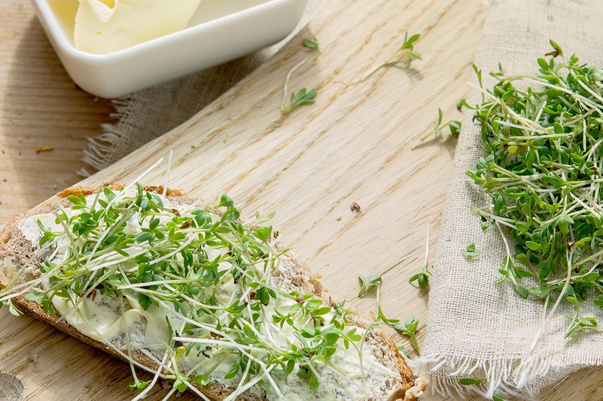 Ein besonders leckeres Picknickrezept: Weizenfreies Brot ist der perfekte Begleiter. © pixabay.com
